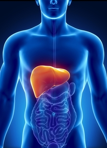 autoimmune-hepatitis